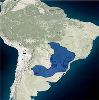 El Acuífero de Guaraní y su importancia geopolítica