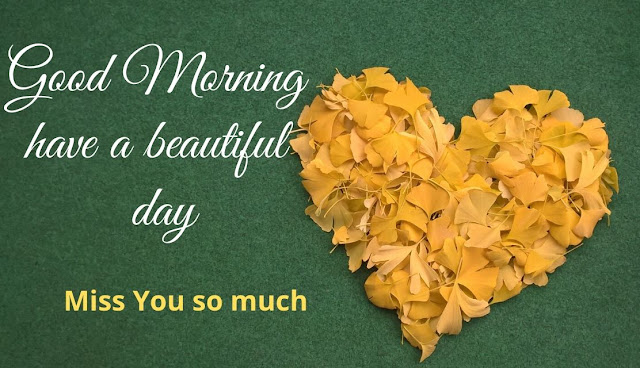 Romantic Good Morning have a nice day Miss You Image for Love