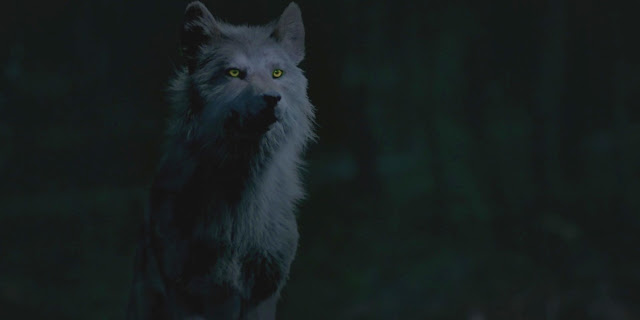 werewolf hope mikaelson