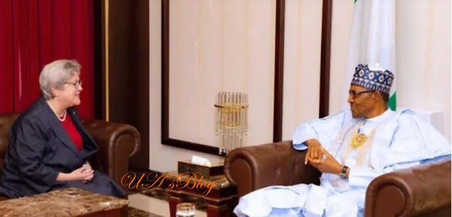 Human rights abuse: My conscience is clear, Buhari tells US envoy