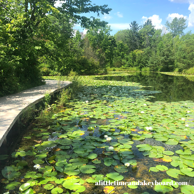 Mystery Lake effortlessly engages the sense of wonderment at Schlitz Audubon Nature Center in Milwaukee