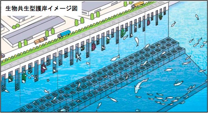 海 施設 本牧 釣り