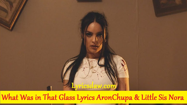 AronChupa What Was in That Glass Lyrics Little Sis Nora