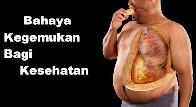 √ Penting : Bahaya Obesitas bagi Kesehatan