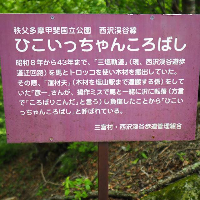 西沢渓谷 ひこいっちゃんころばし