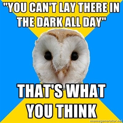 You can't lay there in the dark all day depression meme