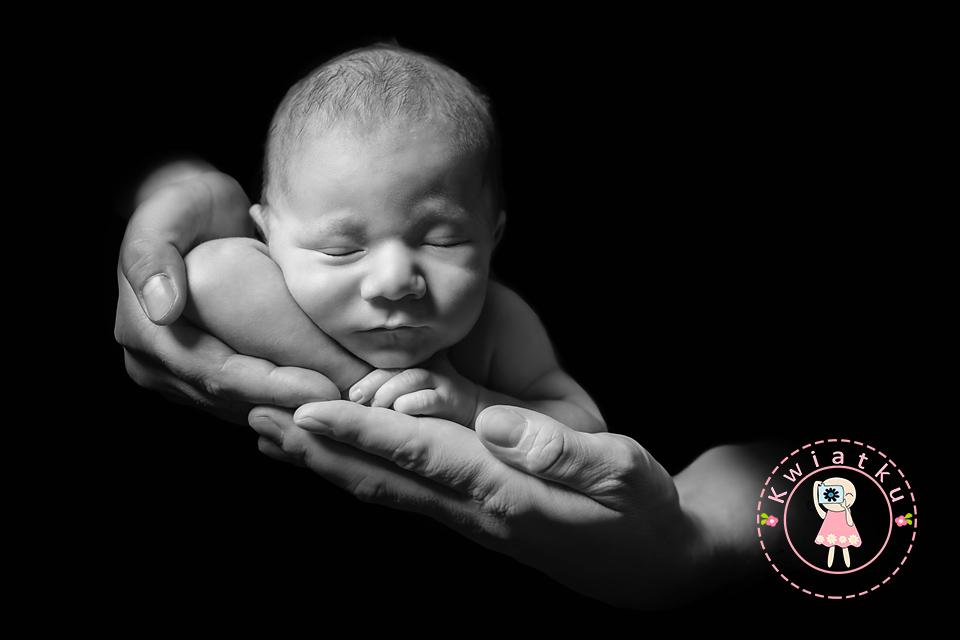 noworodkowa trojmiasto