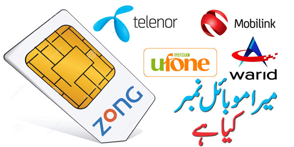 How to Check Telenor Sim Number Code - PostEFY