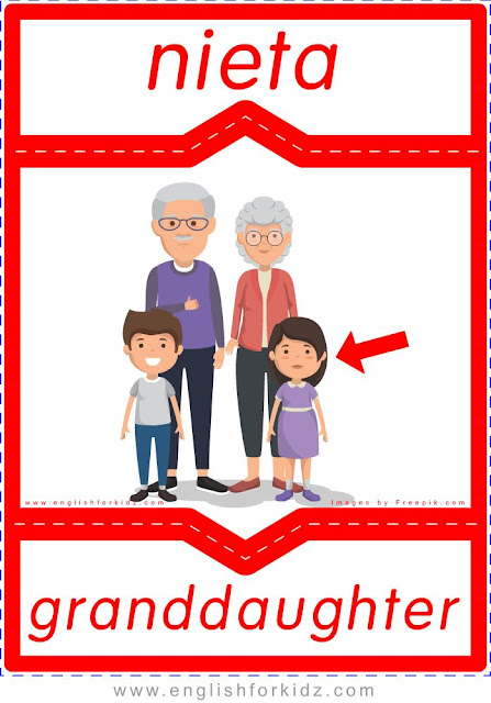 Granddaughter English-Spanish flashcards for the family members topic