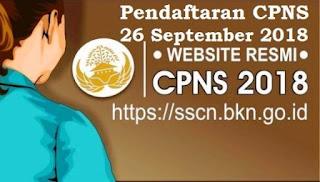 Pendaftaran cpns di sscn bkn go id