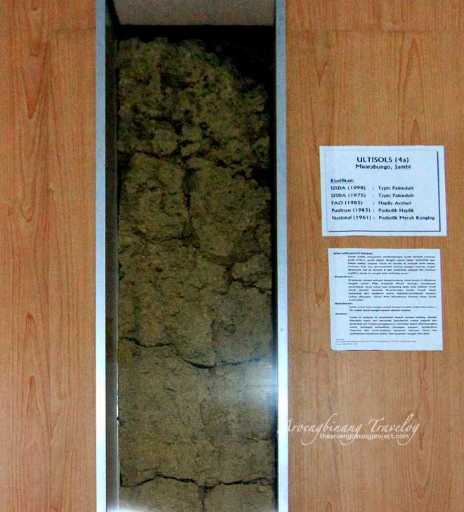 bogor soil museum