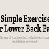 5 Simple Exercises For Lower Back Pain #infographic