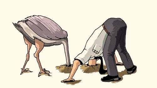 ostrich-effect.jpg