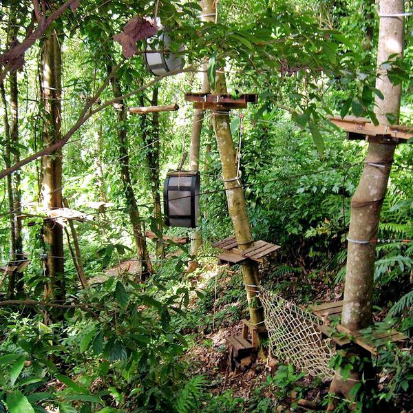 Treetop Adventure Park Koh Chang