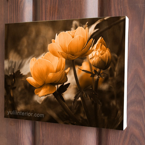 Nature Canvas wall art, prints in port harcourt, Nigeria
