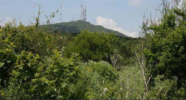 Es falso que 30 hectáreas del Parque Nacional El Cimatario se convertirán en zona habitacional