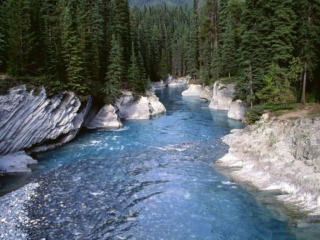 Gli ambienti acquatici il fiume - Letto di un fiume ...