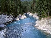 Ricerca sul fiume per i bambini delle scuole elementari