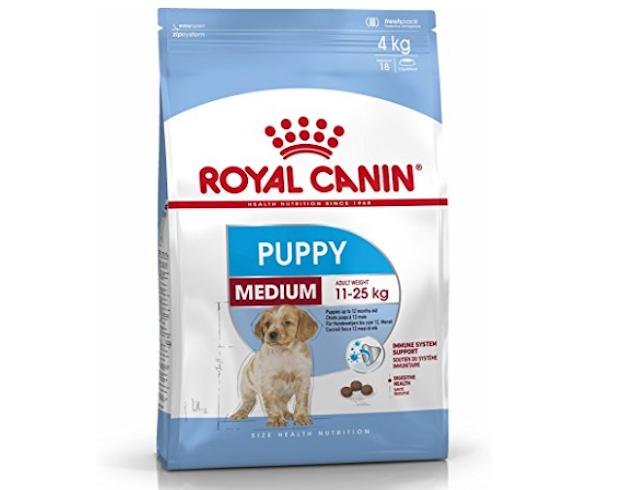 labrador food, royal canin for labrador, food of labrador puppy