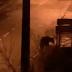 Captan a oso deambulando por las calles de un pueblo