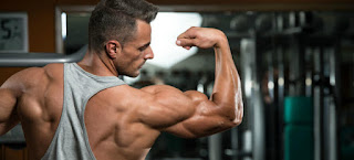 Winstrol and Stanozolol reviews 2019