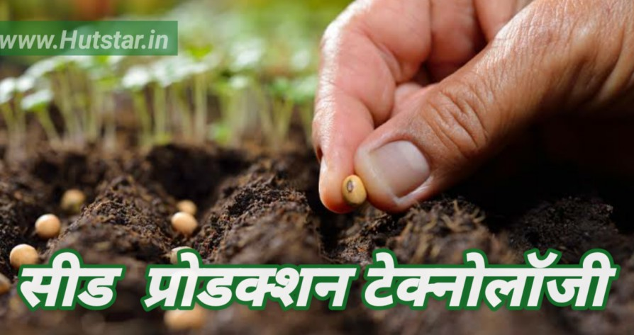 Seed Production Technology in Hindi