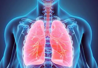 Paru paru tetap sehat meskipun merokok