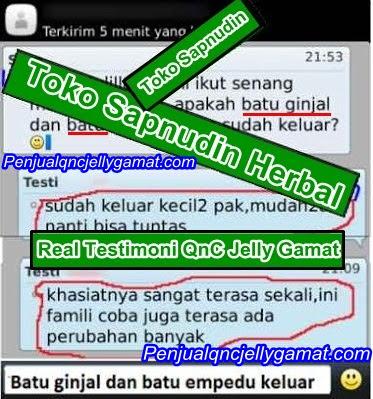 QnC Jelly Gamat Murah Dan Asli