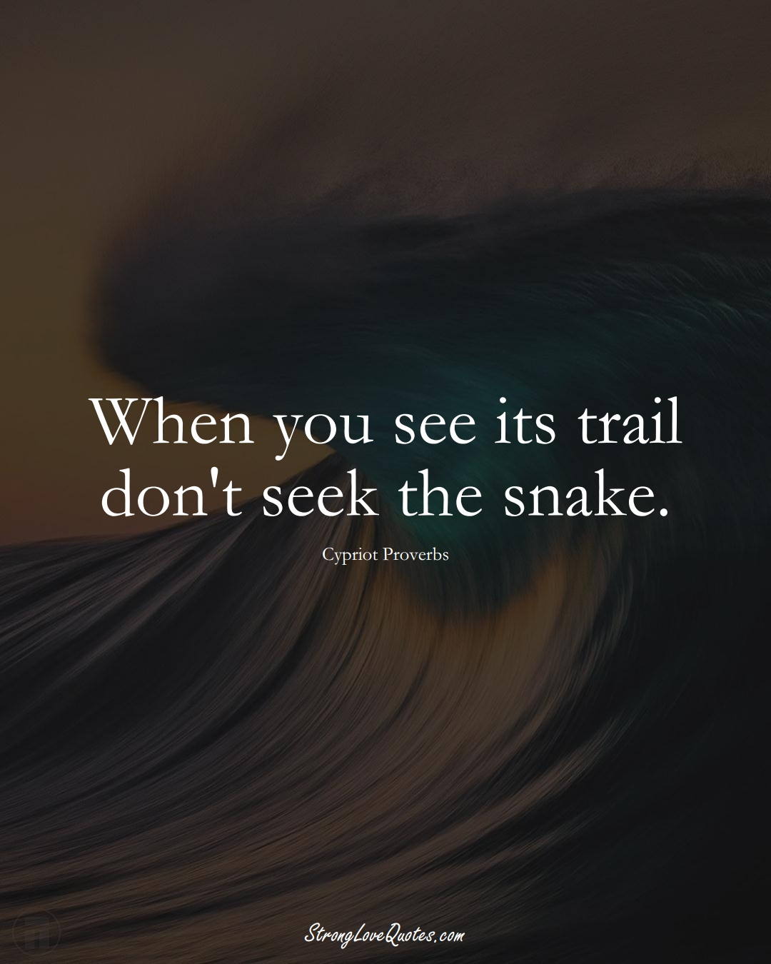 When you see its trail don't seek the snake. (Cypriot Sayings);  #MiddleEasternSayings
