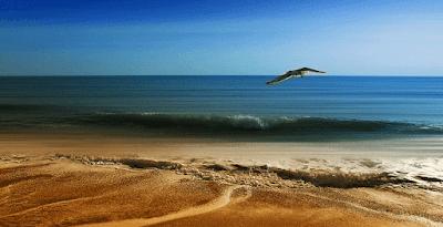 Pemandangan Pasir Laut Musim Semi