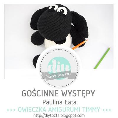 http://diytozts.blogspot.com/2017/05/11-goscinne-wystepy-paulina-ata_8.html