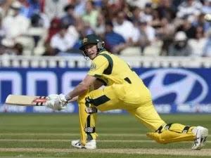 India vs Australia 1st ODI 2013 Highlights