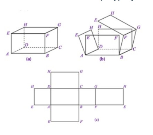 Cara Membuat Jaring-Jaring Balok