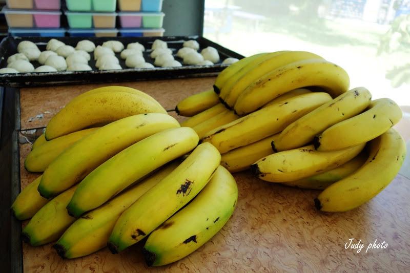 南投親子一日遊-香蕉