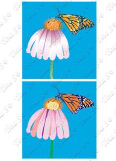 https://www.canstockphoto.ca/monarch-butterfly-set-1-77297514.html