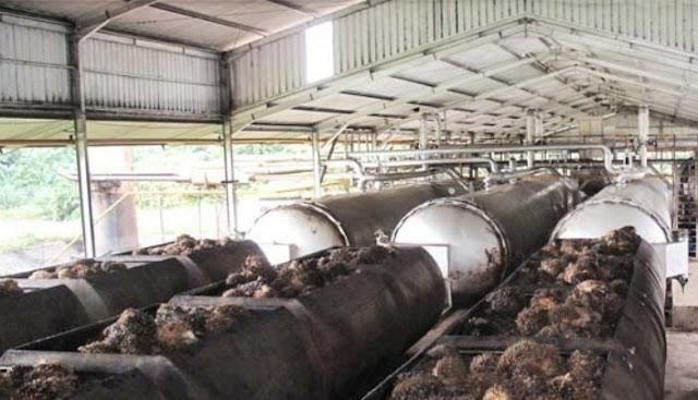 Sudah Rampung, Pabrik Refinery Sawit MGRO Beroperasi Januari 2020