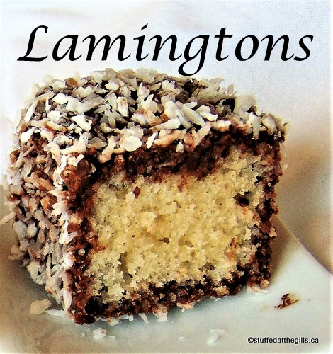 Lamington--cake pieces rolled in chocolate and coated in coconut.