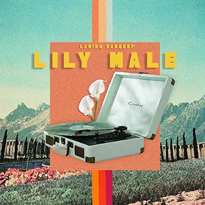 Lily Male Song Lyrics - ලිලී මලේ ගීතයේ පද පෙළ