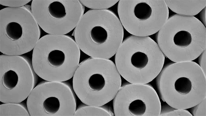Os 3 principais tipos de dispensers para papel higiênico