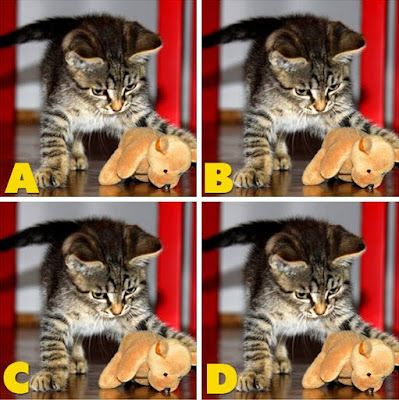 Which image is different? image 30
