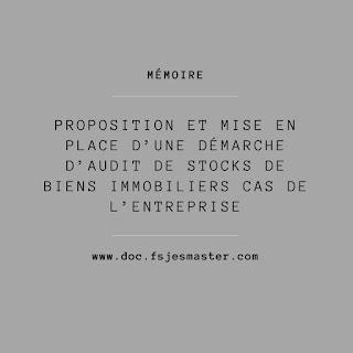 Proposition et mise en place d'une démarche d'audit de stocks de biens immobiliers Cas de l'entreprise