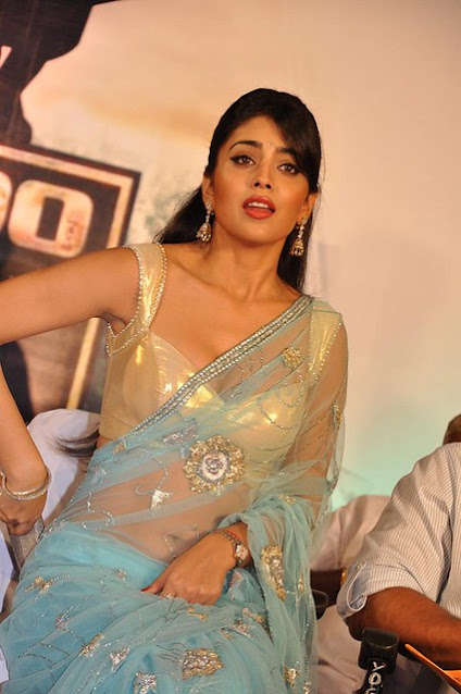 [130+] Actress Shriya Saran Deep Cleavage Hot Photos Collection Actress Trend