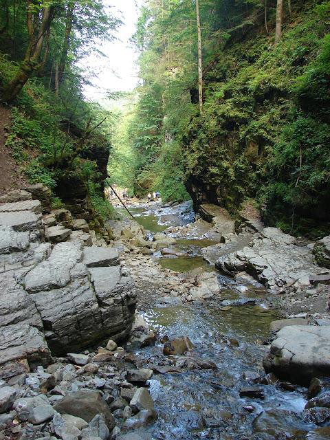 Ущелье рядом с Манявским водопадом