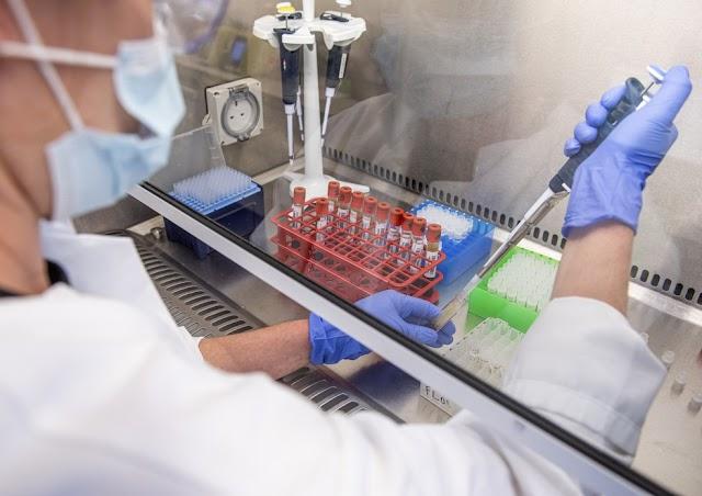 Oxford anuncia que vacina induziu 'fortes respostas imunes' em voluntários idosos em testes de fase 2