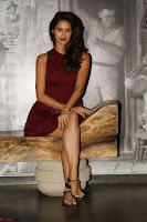 30 Best Pics of Disha Patani Tiger Shroff Girlfriend  Exclusive Galleries 018.jpg