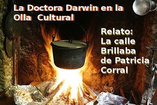 Olla Cultural
