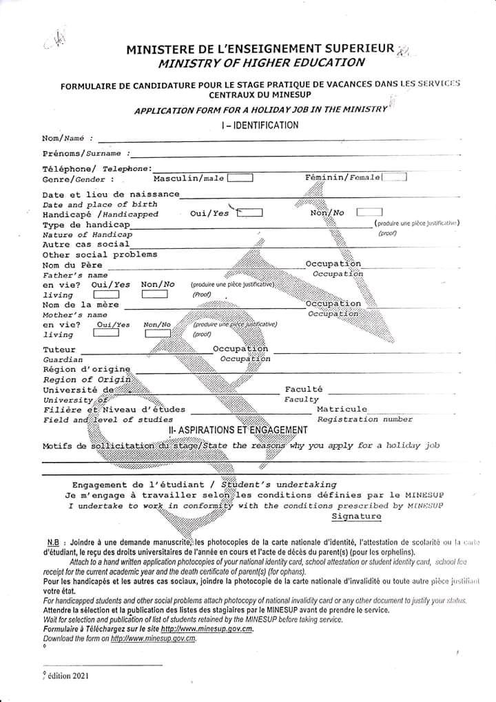 Formulaire de candidature pour le stage pratique de vacances au MINESUP 2021 pdf
