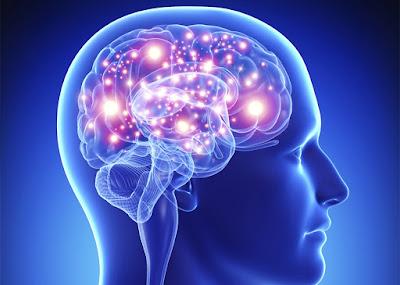 8 حقائق مثيرة لا تعرفها عن العقل البشري