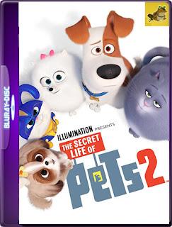 La vida secreta de tus mascotas 2 (2019) [Latino-Ingles] [1080P 60FPS ] [Hazroah]