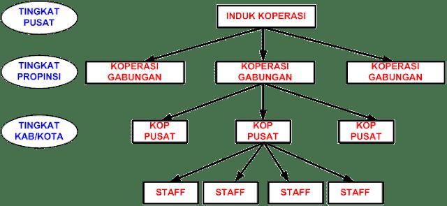 Struktur Eksternal Organisasi Koperasi